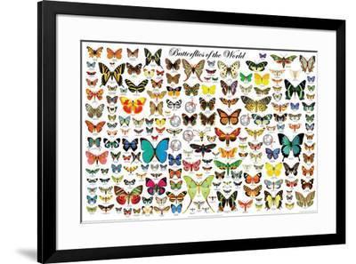 Butterflies of the World--Framed Poster