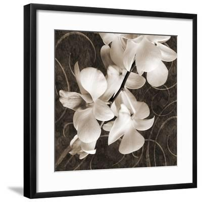 Orchid & Swirls I-Christine Zalewski-Framed Art Print