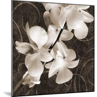 Orchid & Swirls I-Christine Zalewski-Mounted Art Print