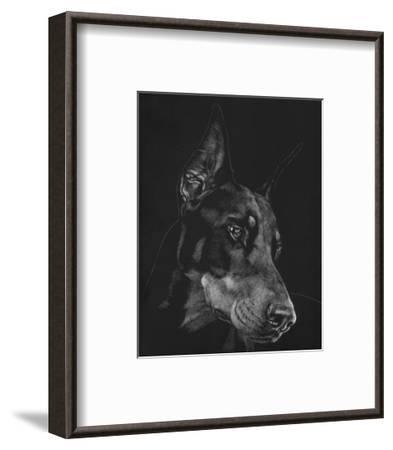 Canine Scratchboard III-Julie Chapman-Framed Art Print