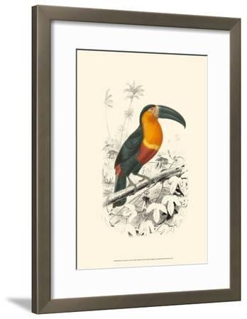 Birds of Costa Rica I-M^ Charles D'Orbigny-Framed Art Print
