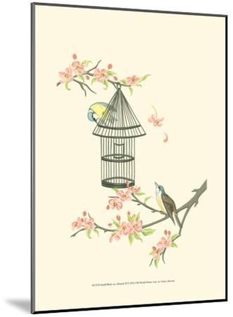 Small Birds on a Branch II-Nancy Slocum-Mounted Art Print