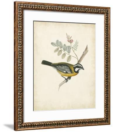 Delicate Birds V--Framed Giclee Print