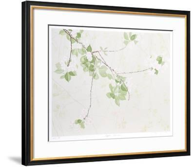 Apple Blossoms-Jon D'Orazio-Framed Collectable Print