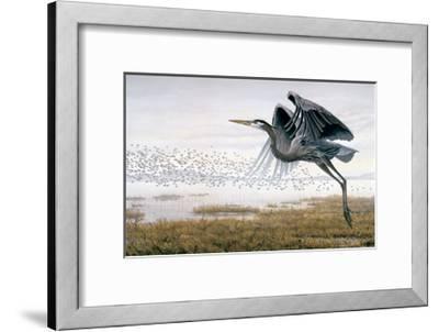 Heron & Sandpipers-Don Li-Leger-Framed Art Print
