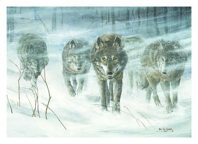 Wolfpack In Snowstorm-Don Li-Leger-Framed Art Print