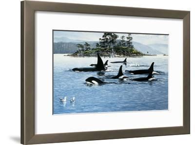 Passing Through-Orcas-Andrew Kiss-Framed Art Print