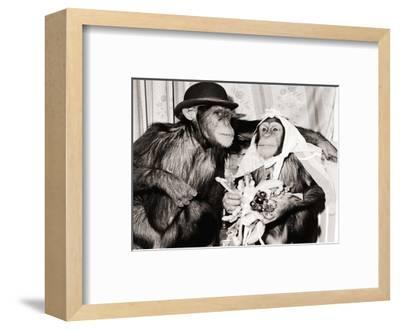 Be My Bride--Framed Art Print