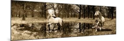 Spirits of the Woods-Marc Moreau-Mounted Art Print