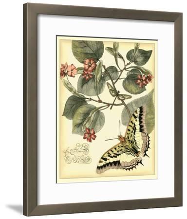 Whimsical Butterflies I--Framed Giclee Print