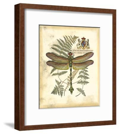 Regal Dragonfly III--Framed Giclee Print