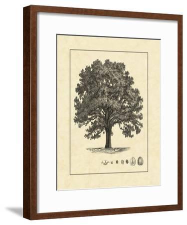 Vintage Tree I--Framed Giclee Print