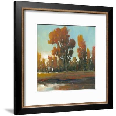 Late Afternoon Fall-Tim O'toole-Framed Art Print