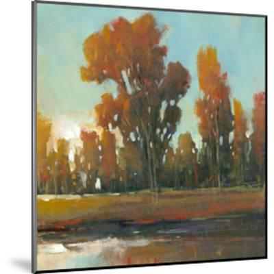 Late Afternoon Fall-Tim O'toole-Mounted Art Print