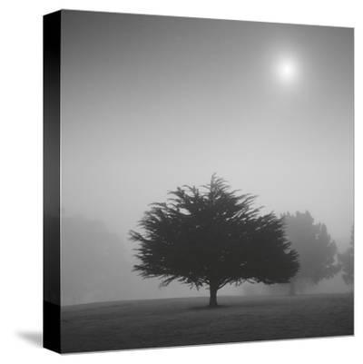 Judge-Moises Levy-Stretched Canvas Print