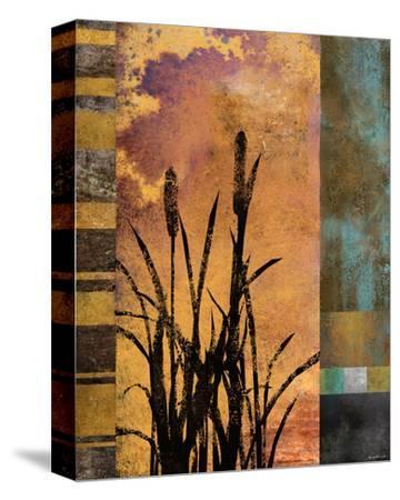 Sawgrass II-Rick Novak-Stretched Canvas Print