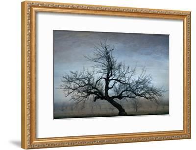 Farm House Tree-David Winston-Framed Giclee Print