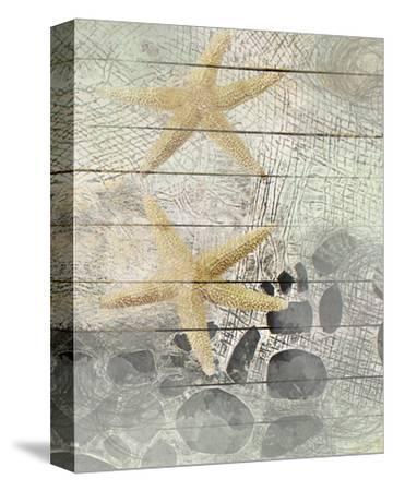 Sea Stars-Irena Orlov-Stretched Canvas Print