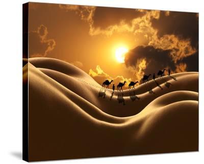 Camel Back Dream-Richard Desmarais-Stretched Canvas Print