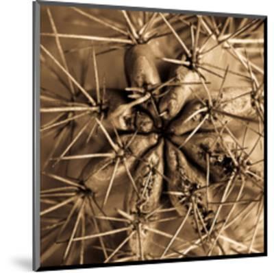 Cactus-Jean-Fran?ois Dupuis-Mounted Art Print