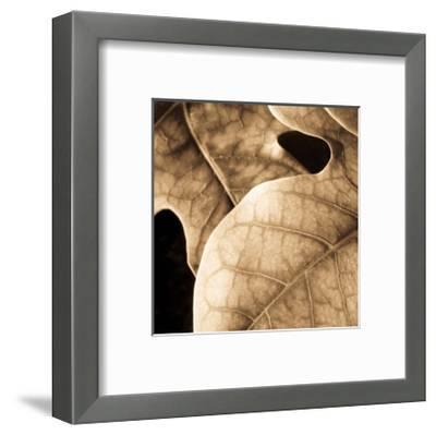 Leaves-Jean-Fran?ois Dupuis-Framed Art Print