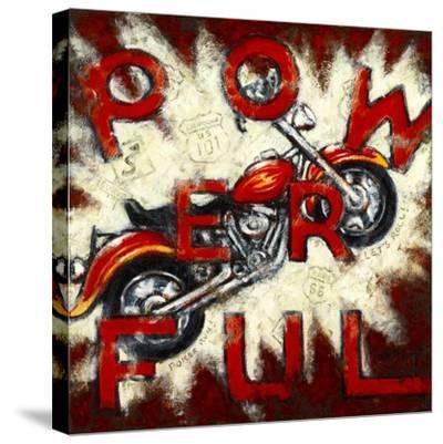 Powerful-Janet Kruskamp-Stretched Canvas Print