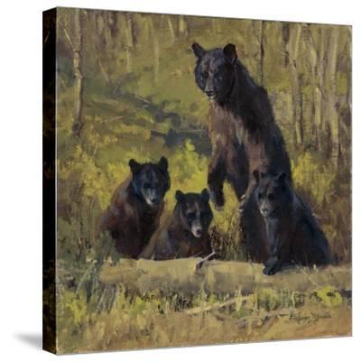 Twin Mountain Triplets-Karen Bonnie-Stretched Canvas Print