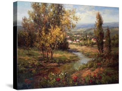 Vista de Verona-Hulsey-Stretched Canvas Print