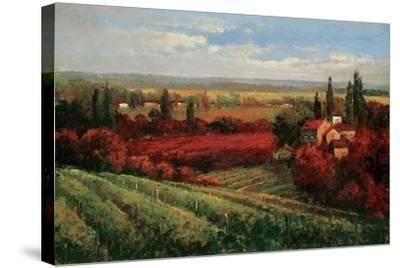 Tuscan Fields of Red-Matt Thomas-Stretched Canvas Print