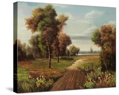 Fisherman Trail-Lazzara-Stretched Canvas Print