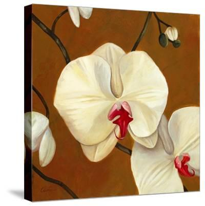 Orquideas Blancas I-Clunia-Stretched Canvas Print