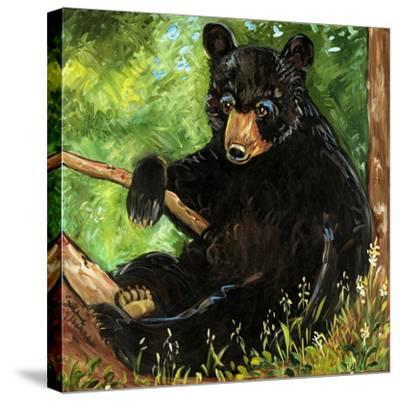 Baby Bear-Suzanne Etienne-Stretched Canvas Print