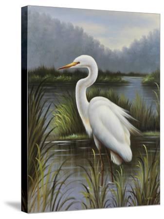 Morning Egret-Kilian-Stretched Canvas Print
