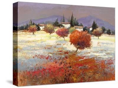 Dolci colline-Luigi Florio-Stretched Canvas Print