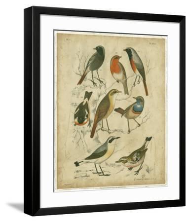 Avian Gathering I-G^ Lubbert-Framed Art Print