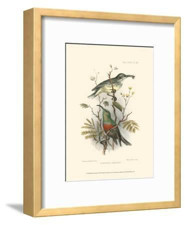 Birds in Nature I-J^C^ Keulemans-Framed Art Print