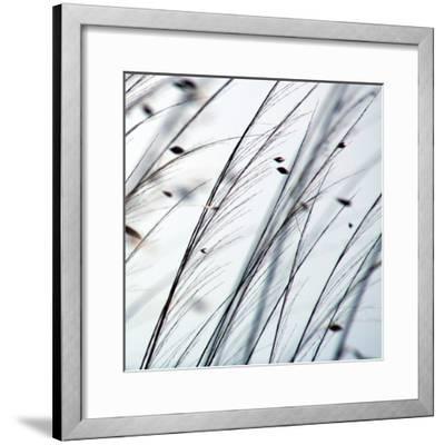 Organic II-Tony Koukos-Framed Giclee Print