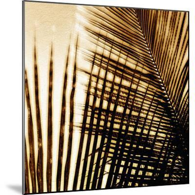 Light on Palms I-Malcolm Sanders-Mounted Giclee Print