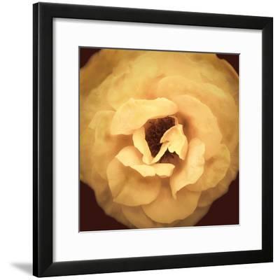 Amber Rose-Katja Marzahn-Framed Giclee Print