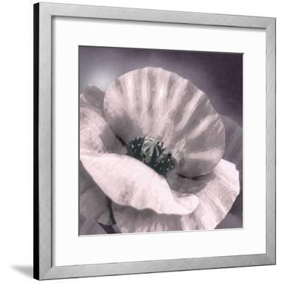 Poppy Dusk I-Lucy Meadows-Framed Giclee Print