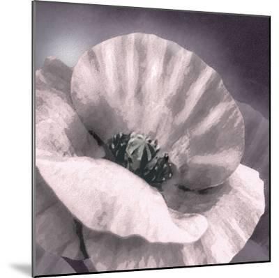 Poppy Dusk I-Lucy Meadows-Mounted Giclee Print