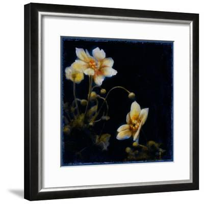 Midsummer Night Bloom III-Douglas-Framed Giclee Print