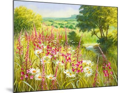 A Meadow In Spring-Mary Dipnall-Mounted Giclee Print
