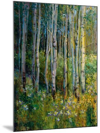 Aspens in Spring-Patrick-Mounted Giclee Print