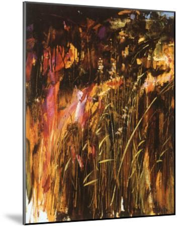 Midsummer Dream II-Rodolfo Tonin-Mounted Art Print