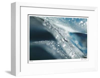 H2O 1-Florence Delva-Framed Giclee Print