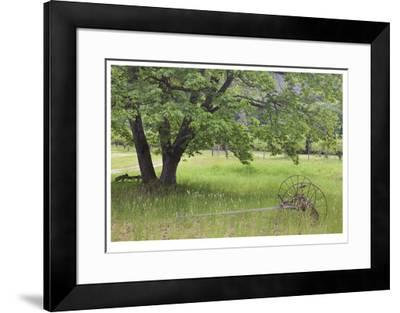 Homestead Fields-Donald Paulson-Framed Giclee Print