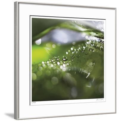 Dew Drops 5-Florence Delva-Framed Giclee Print