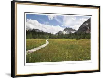Meander The Meadow-Donald Paulson-Framed Giclee Print