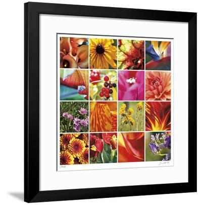Floral Square Ensemble-Joy Doherty-Framed Giclee Print